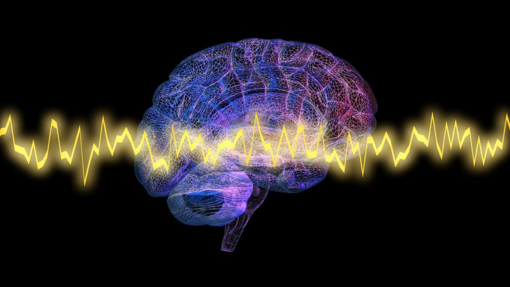 What happens in the brain during hypnosis
