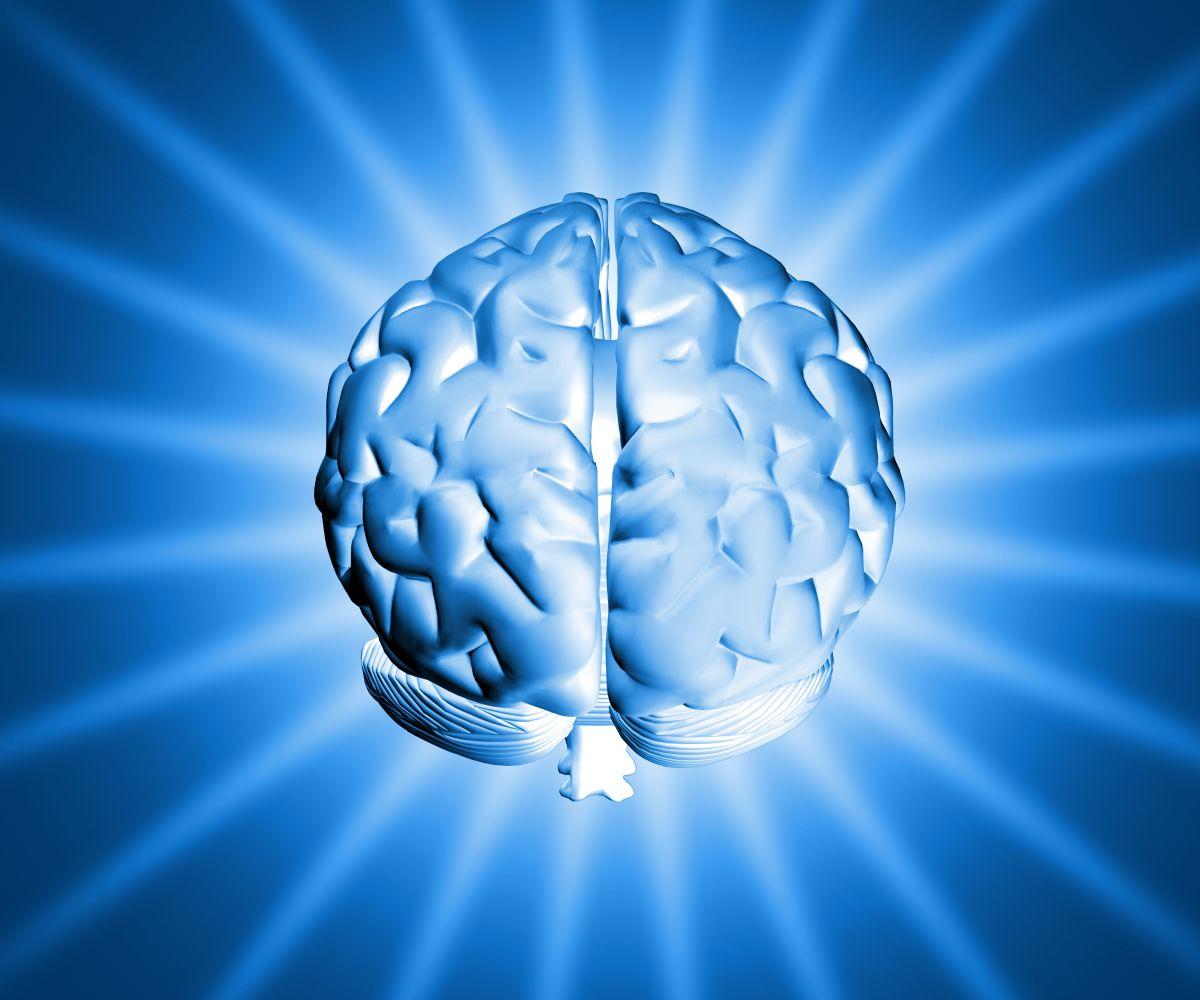 Balanced brain - roxiva.com